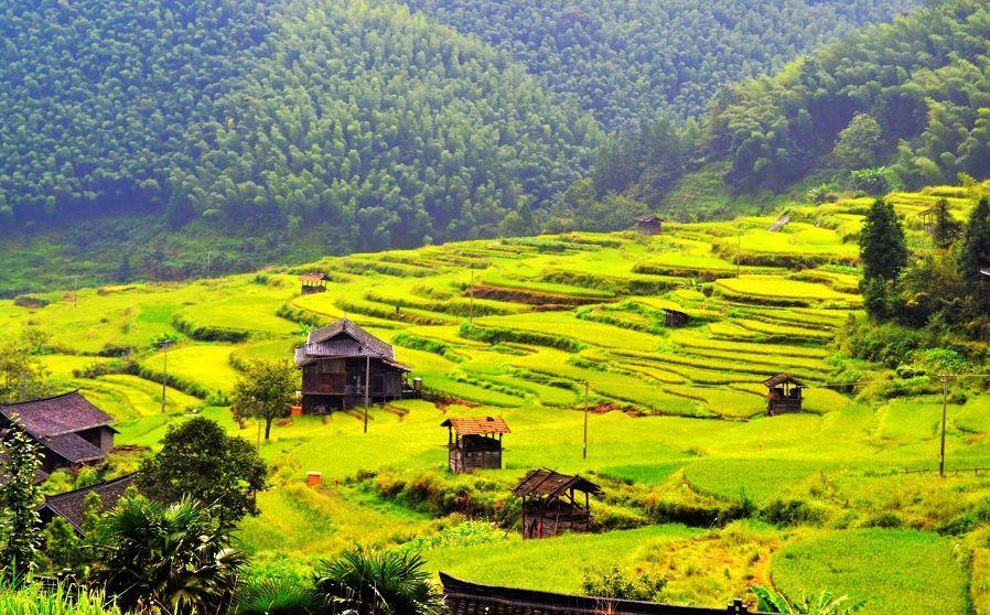 湖南旅游有哪些景点推荐?小游戏神庙逃亡攻略秘籍图片