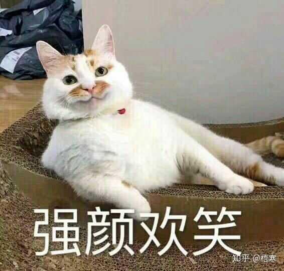 一个喜欢猫的男人_一个男人可以小气到何种程度?