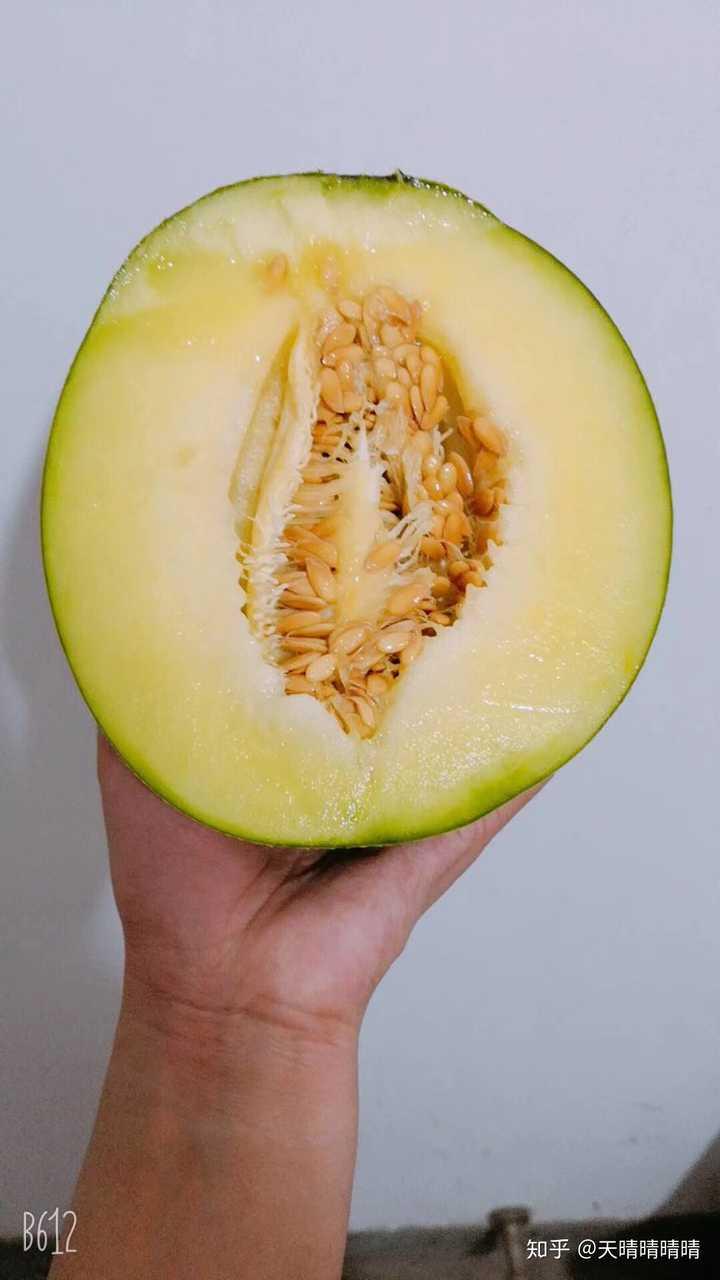 海南网纹瓜,这个瓜无敌了,太甜了,比以往吃过的哈密瓜都好吃  这些都图片