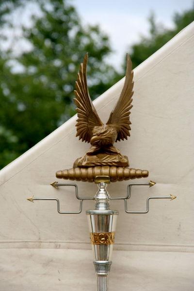 纳粹标志 佛教标志图集 德国纳粹鹰标志桌面 纳粹万字标志