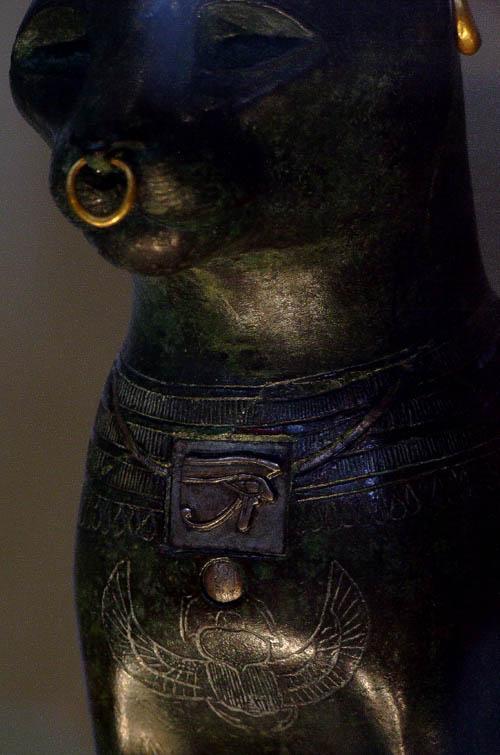 古埃及人相信猫有灵力,能通各种神灵鬼邪,也是最接近鬼神的.
