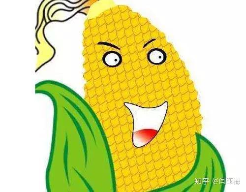 怀孕能吃酸�:lo9.b_有一种甜玉米,其氨基酸组成中以健脑的天冬氨酸,谷氨酸含量较高,脂肪