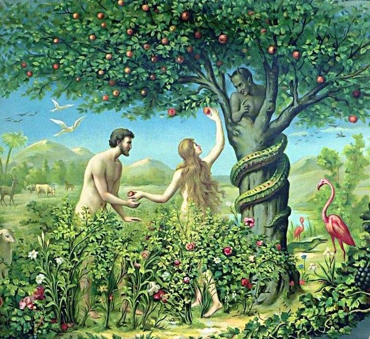 但亚当夏娃的反应却是: 哎呀,好羞耻啊,赶紧找一些树叶来遮一遮吧.图片