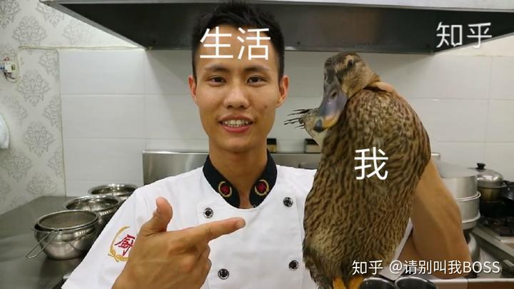 再加个被生活扼住喉咙的鸭鸭(д`)图片