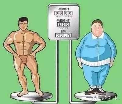 瘦人增重_因此,一个瘦人想要增重,无论男生女生
