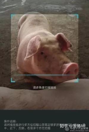 ai+高科技养猪,互联网大佬们为何走上了养猪之路?