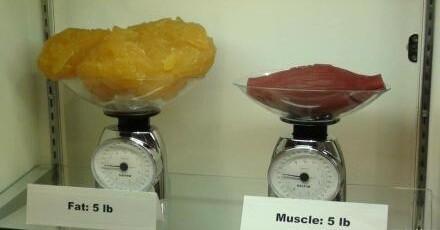 所以,减肥不是减体重,减脂肪也不是减肥,体重减瘦脸,叫减肥.光影魔术只有美颜手图片