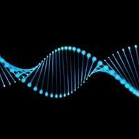 基因漫游指南