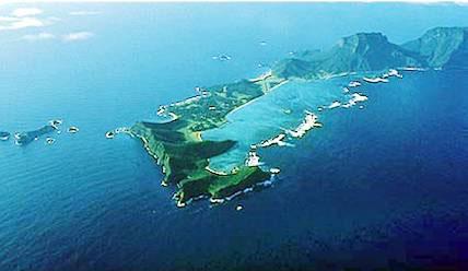 孤悬海外临绝岛——关于生命的一个小故事