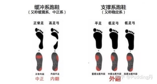 新人想入一双亚瑟士跑鞋,该如何选择?