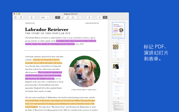 MacBook上有哪些好用的学习类软件 Mac集合 第2张
