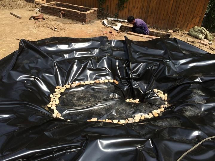 庭院建造池塘的造景过程【转自weibo:@马锐拉】插图(22)