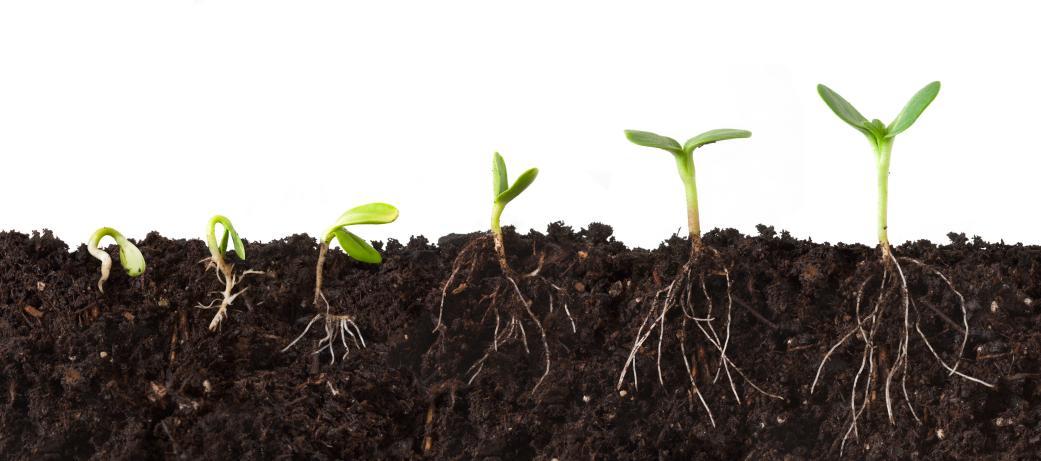 不同尺度谈土壤_2 土壤的前世今生
