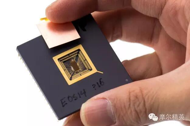 国内芯片技术交流-处理器漏洞英特尔/Arm/AMD/高通/苹果全躺枪,RISC-V能幸免于难?risc-v单片机中文社区(1)