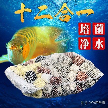 新手入门养鱼,该怎么开始?(图78)