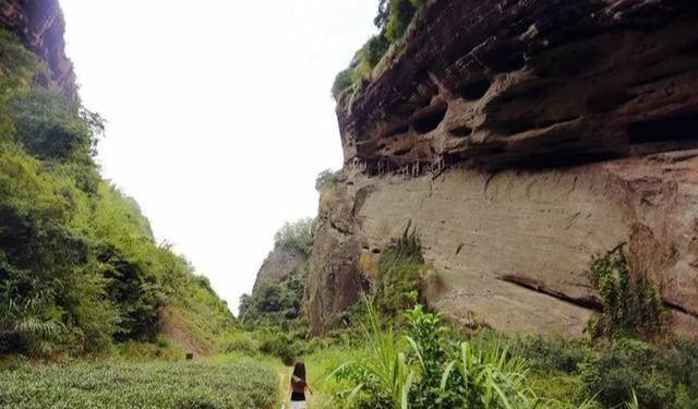 武夷山有哪些好玩的景点(武夷山景区有哪些)