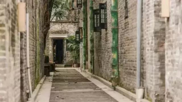 广州景点最好玩的排名(广州15个最适合春游的打卡点)