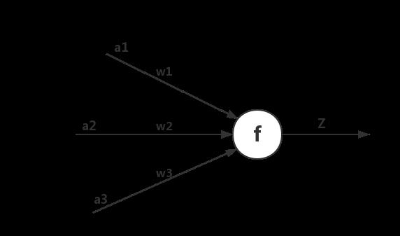 图2 神经元结构图