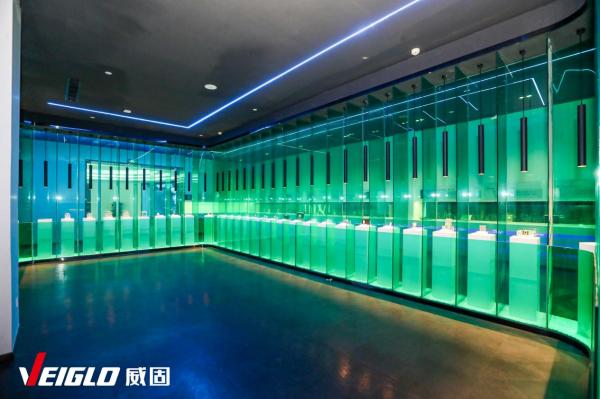 """并购""""深圳忆数存储"""",上海威固信息以全新产业基地迈向国际化市场"""