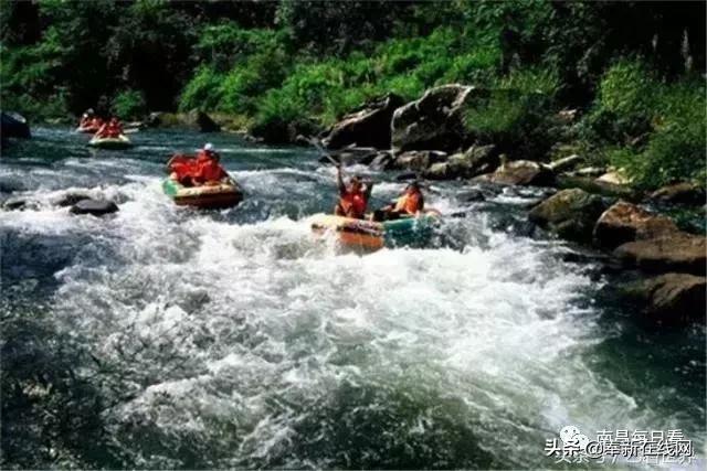 奉新县属于哪个市(奉新县四个值得一去的旅游景点)
