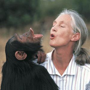 动物行为学