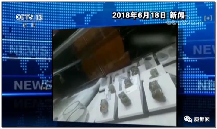 """震怒全网!云南导游骂游客""""你孩子没死就得购物""""引发爆议!150"""