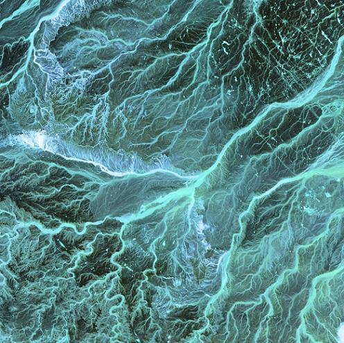 科学家在约旦河发现史上首条污染河流