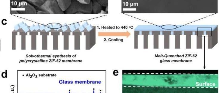 天津大学《德国应化》:远超Robeson上限!MOF玻璃气体分离膜