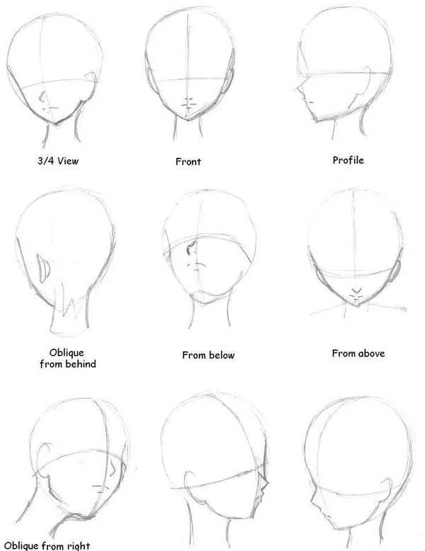 日漫脸型画法_动漫绘画学:动漫/漫画人物脸型画法及脸部结构比例-知乎