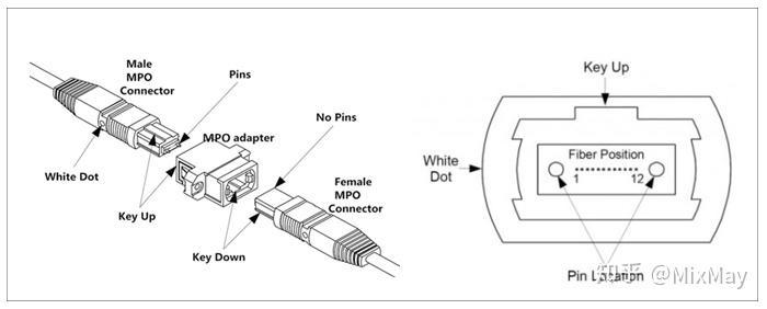 MPO光纤跳线的结构和极性分类