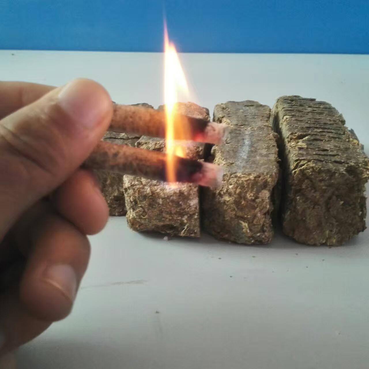 生物质花生壳压块然料燃烧过程分析