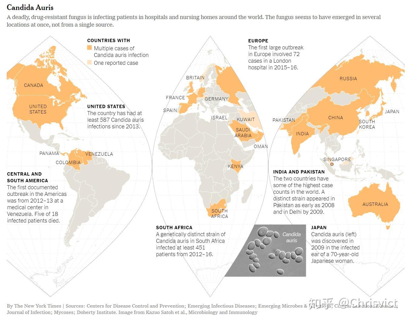 中国已有 18 例确认感染的「超级真菌」耳念珠