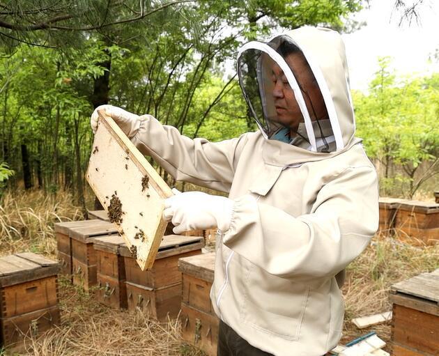 可以直接完成新的蜂蜜�幔刻烊环��物蜜直接吃�幔�