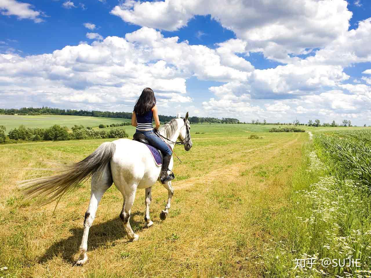 梦见自己骑大马 梦见自己骑着大马跑