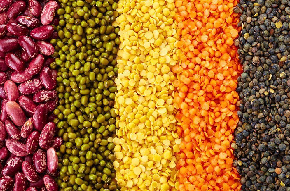 五谷杂粮选哪个品牌好?