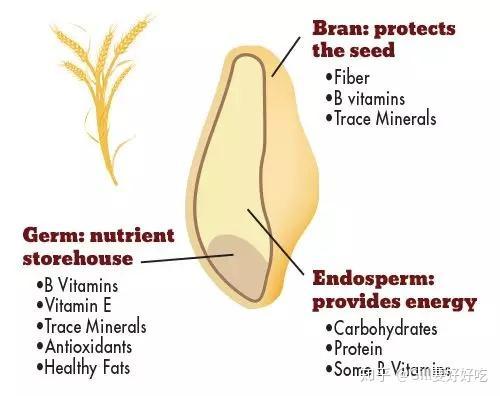 全麦面包减肥食谱图片