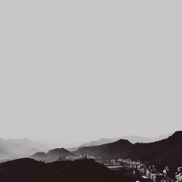 黑白树_有哪些冷淡风的头像? - 知乎