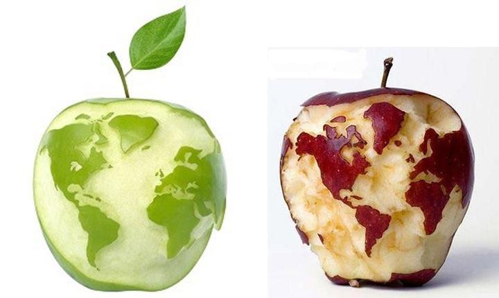 一个加拿大果农搞的转基因苹果就要上市了,骚年你不来一发?