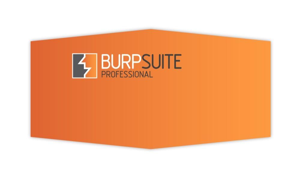 Worthwhile BurpSuite Plugins