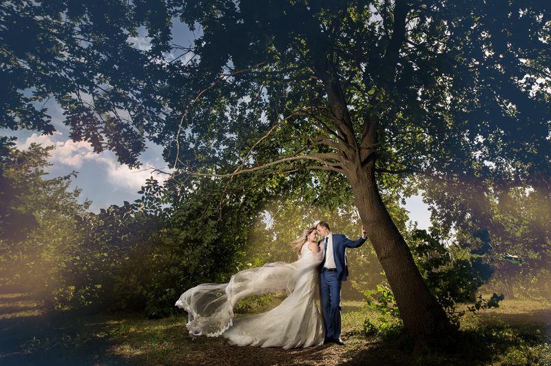 【S167】 俄罗斯摄影师Dmitry Usanin婚礼飘纱裙摆合成修饰教程
