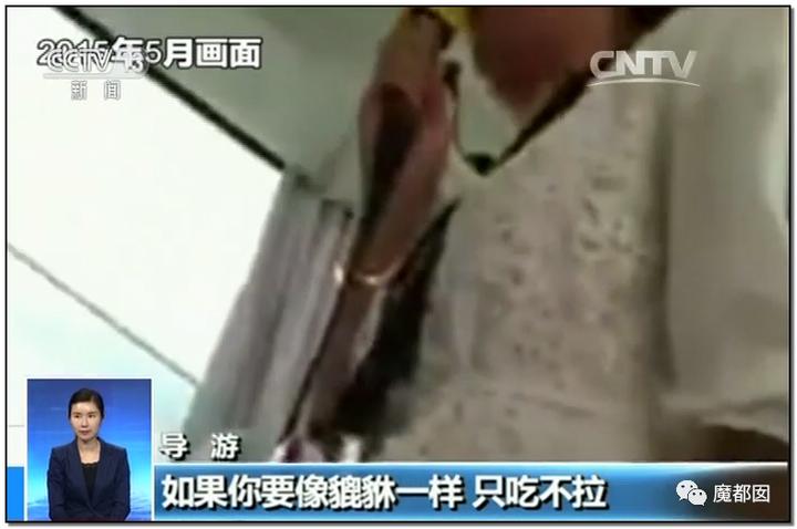"""震怒全网!云南导游骂游客""""你孩子没死就得购物""""引发爆议!125"""