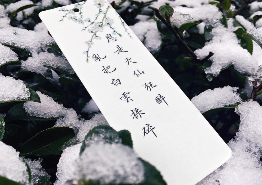 写风写风的诗句_你最喜欢的关于雪的诗句是哪一句? - 知乎