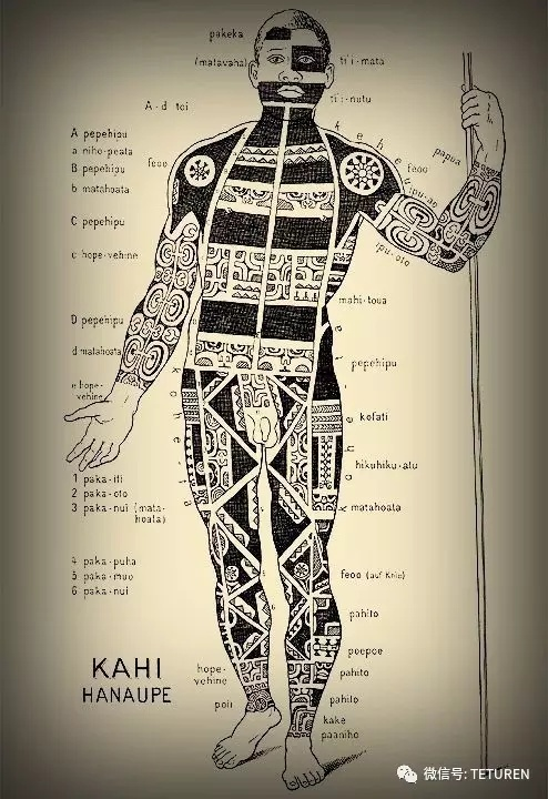 浅谈纹身神圣的最初,纹身发源地之波利尼西亚