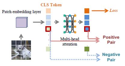 图14:浅层和深层相对应的patch representations接近,而与其他的patch representations疏远