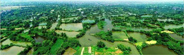 非诚勿扰2里的诗_如果你来杭州,我会非常推荐你在西溪湿地里住上一晚~ - 知乎