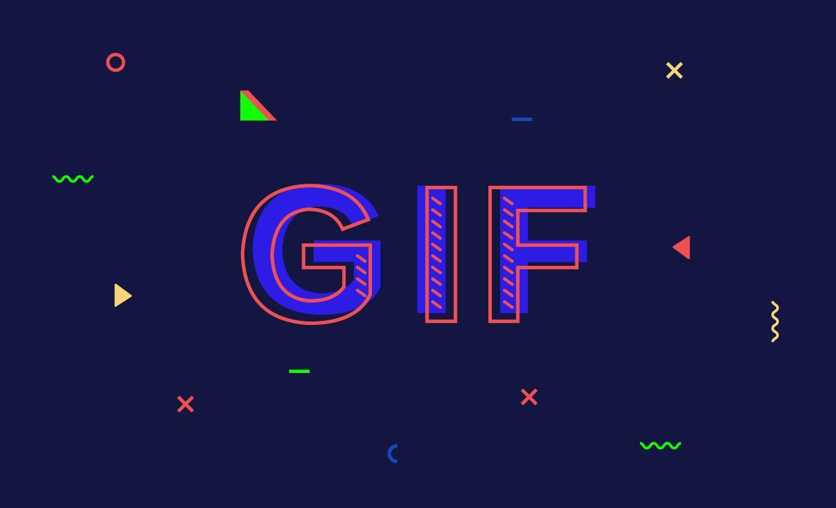 今天开始,知乎支持 GIF 啦 🚀
