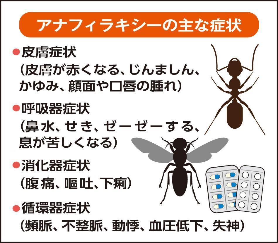 失神 腹痛 失神|慶應義塾大学病院 KOMPAS