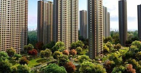 重庆人均住房面积_人均耕地面积图