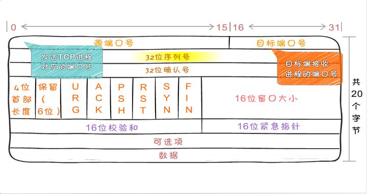 ip协议作用于什么层_TCP/IP协议详解 - 知乎
