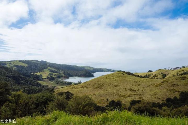 从南到北,不一样的冬季新西兰